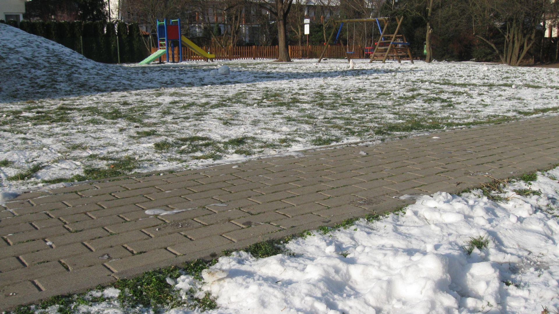 Odgarnięcie świeżego śniegu brzozową miotłą zupełnie wystarczy. Fot. Buszrem