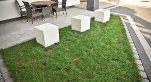 Aranżacja przestrzeni wokół domu to zadanie, które wymaga umiejętności łączenia funkcjonalnych rozwiązań z obowiązującymi trendami.