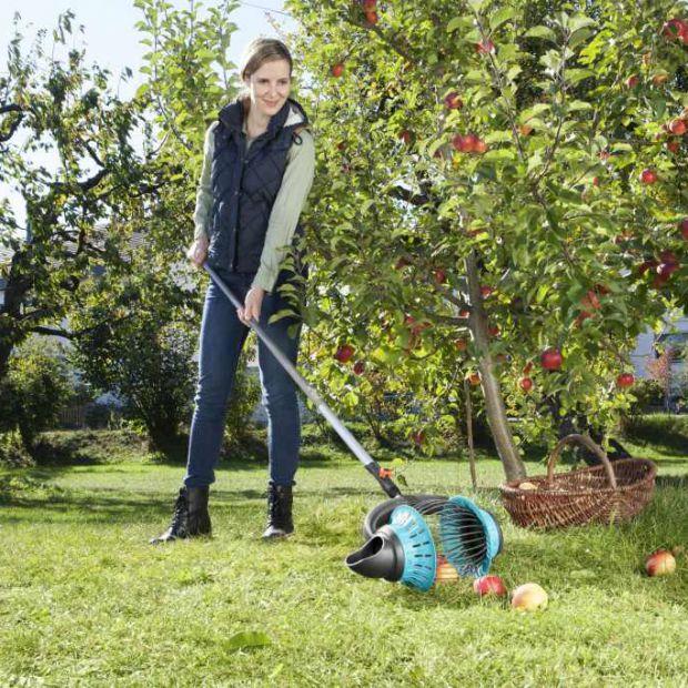 Rok w ogrodzie – wszystkie ważne prace od stycznia do grudnia