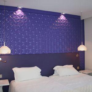 Panel Impressions w hotelu Holiday Inn w Paryżu. Fot. Muraspec