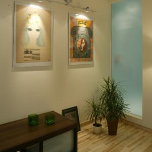 Tafla mlecznego szkła to część kabiny prysznicowej, która znajduje się w sąsiadującej z pokojem gościnnym, łazience. Monika Filipiuk.