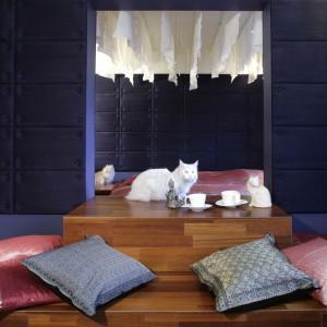 Do sypialni niczym z Baśni z tysiąca i jednej nocy, wiodą schodki z drewna doussie. Z tego samego materiału wykonano konstrukcję, która niemal w całości wypełniła wnętrze. Fot. Monika Filipiuk.
