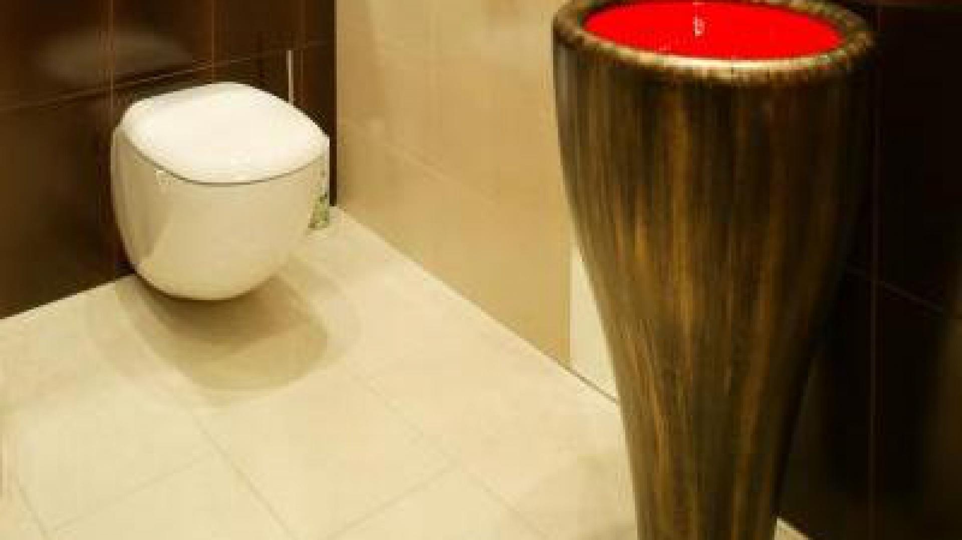 Umywalka jest przymocowana do ściany, chociaż wygląda na wolno stojącą. Fot. Marcin Łukaszewicz.
