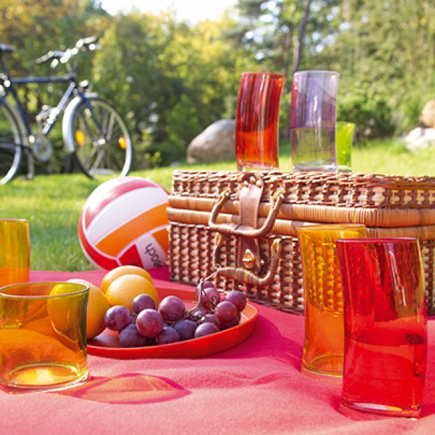 Z arsenałem na piknik