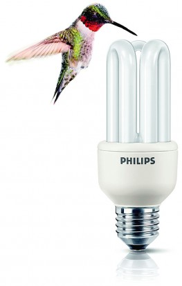 Philips świetlówka