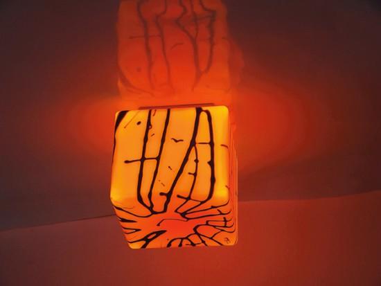 salonlamp.pl lampa