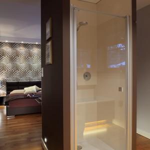 Bryłę obudowy prysznica można obejść dookoła. Jej kąpielową funkcję zdradza jedynie przeszklone wejście do brodzika. Fot. Bartosz Jarosz.