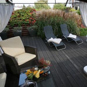 Ogród został stworzony po to, aby jak najmniej w nim pracować, a najwięcej wypoczywać i korzystać z tego, że można tu odpocząć dosłownie w każdej chwili. Fot. Bartosz Jarosz.