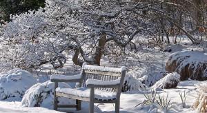 Widok świata przykrytego białym puchem wprowadza w niezwykle magiczny klimat. Mimo srogiej auryzima potrafi zachwycić swoją urodą.