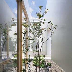 Dom, który współistnieje z naturą. Fot. Nacasa & Partners Makoto Yasuda.