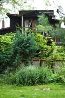 Ogród z charakterystycznymi motywami kamiennymi