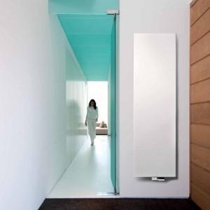 Grzejnik Niva to prosta, minimalistyczna bryła dobrze pasująca do nowoczesnych wnętrz. Fot. Vasco / Vascoart.pl.