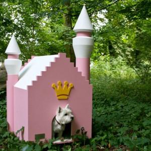 Pies rasy domowej, nieodpowiedni kształt budy i zastosowany materiał. Fot. Filesluxury
