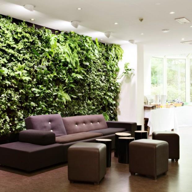 Ogród w domu. Kilka pomysłów na wprowadzenie zieleni do wnętrza