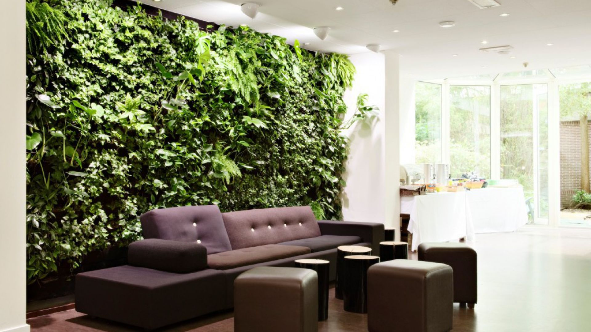 Kompozycja w strefie salonowej. System montowany na ścianie pionowej. Roślinność oświetlana sztucznie za pomocą kierunkowych reflektorów sufitowych. Fot. Homegardenair.