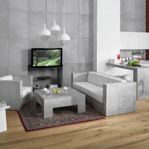 Aranżacja pokoju dziennego przy użyciu betonu architektonicznego. Betonowe płyty na ścianie oraz kolekcja betonowych mebli. Fot. Morgan&Möller.
