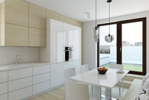 Kuchnia - apartament w Warszawie.
