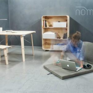 Nina Woroniecka-Nomada, Niezbędne życiowe minimum.