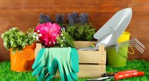 Bez względu na to, czy twój ogród, to wielohektarowa posesja, czy kilka skrzynek na balkonie, będziesz potrzebował miejsca na przechowywanie narzędzi niezbędnych do pielęgnacjiroślin.
