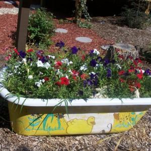 Nowe życie starej wanny. Fot. The Micro Gardener.