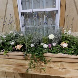 Fot. Prairie Rose\'s Garden.