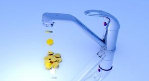 Przeciętny mieszkaniec Polski zużywa ok. 200-300 litrów wody dziennie. Mieszkańcy niektórych krajów Afryki mają do dyspozycji ok. 10 litrów, a bywa i tak, że dostęp do wody pitnej jest niemożliwy przez ca