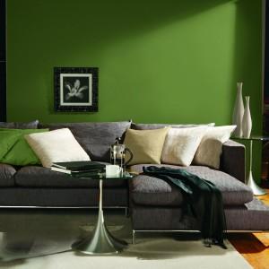Wiosenny kolor ściany zestawiony z neutralnymi szarościami i beżami. Fot. Para Paints.