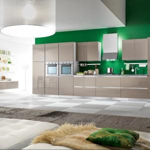Meble kuchenne Lucenta Tortora. Szare lakierowe na wysoki połysk fronty zestawione zostały ze ścianą w mocnym zielonym kolorze. Całość prezentuje się nowocześnie i elegancko. Dostępne są również fronty w innych kolorach. Wycena indywidualna.