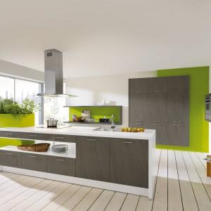 15 Pomysłów Na Zieloną Kuchnię Koniecznie Zobacz Wszystkie