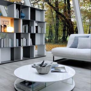 Regał z książkami jest dobrym sposobem na oddzielenie dwóch pomieszczeń. Fot. Mobilgam.it.