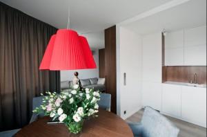 Mieszkanie 55 m2 - salon.