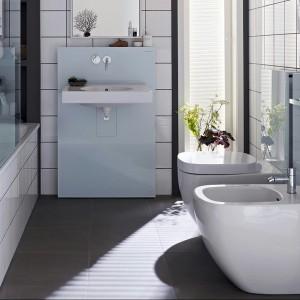 Moduł wykonany ze szkła i szczotkowanego aluminium zawiera w sobie pełną technologię, która w pełni funkcjonuje z miskami ceramicznymi.  Dostępny jest w dwóch wysokościach: 101 cm oraz dopasowanej do modułu Geberit Monolith do umywalek - 114 cm. Występuje w trzech wersjach - do misek WC stojących, wiszących oraz do toalety myjącej Geberit AquaClean.
