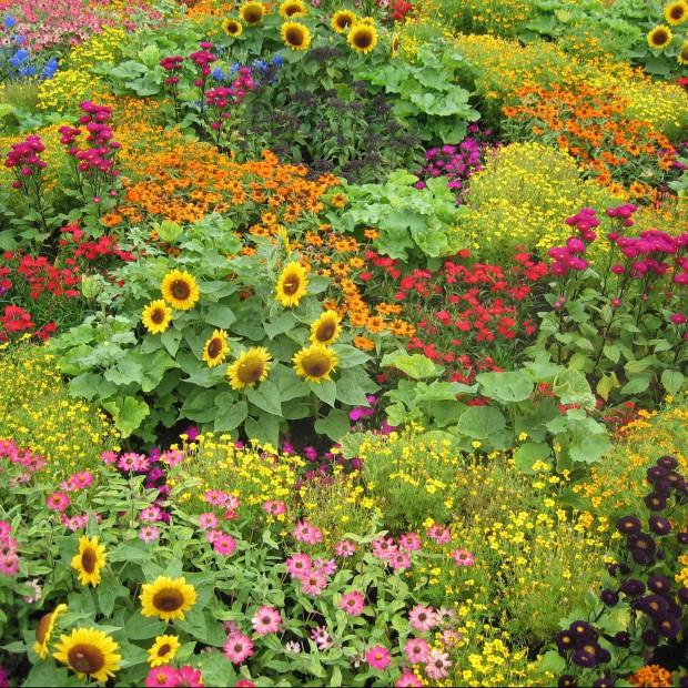Przygotowanie podłoża w ogrodzie na cały sezon