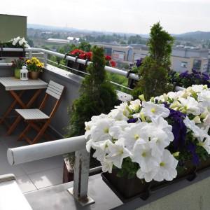 Podpowiadamy Jak Odmienić Balkon Na Wiosnę