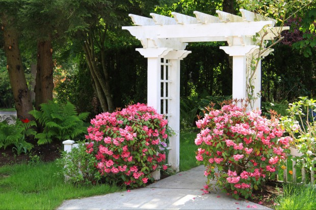 Ażurowa konstrukcja służy przede wszystkim jako podpora dla roślin pnących, ale również może pełnić funkcję ścianki działowej, osłonki tarasu, a także kącika do relaksu.