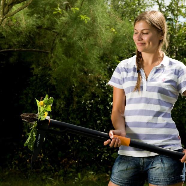 Dla niektórych piękne dla innych uciążliwe – chwasty, czyli zmora w naszym ogródku!