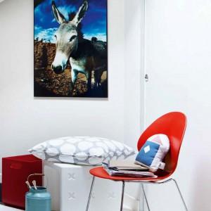 Kolorowy plakat oprawiony w ramkę przełamuje biel ścian. Fot. Caligaris.