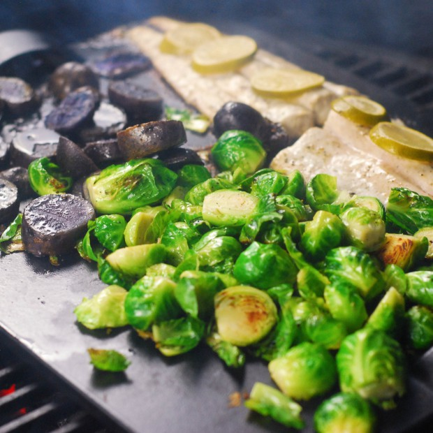 Jak wybrać odpowiedni grill do ogrodu. Krótki poradnik