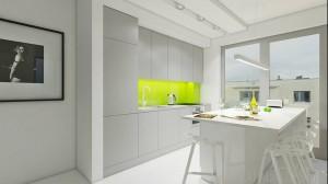 Kuchnia - biała żywica w półmacie i jasnozielone szkło.