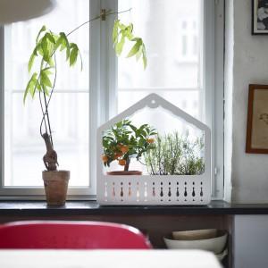 Miniszklarnia. Dzięki temu, że jeden jej bok jest otwarty, a drugi zamknięty, można dowolnie regulować w niej temperaturę.  Stal proszkowana i plastik. projekt: Nicolas Cortolezzis. 99,99 zł. Fot. IKEA.