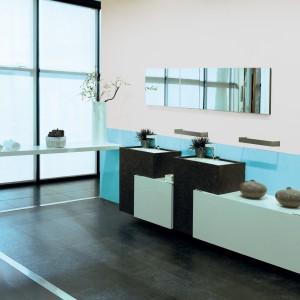 Lateksowa farba emulsyjna Łazienka & Kuchnia przeznaczona jest do malowania ścian i sufitów wewnątrz pomieszczeń szczególnie narażonych na rozwój grzybów pleśniowych oraz na działanie wilgoci. Fot. Dekoral.