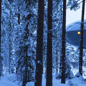 UFO - dom dla miłośników filmów science-fiction. W środku znajdzie się dość miejsca, by zamieszkać tu mogła dwójka dorosłych i trójka dzieci. Fot. Tree Hotel, Szwecja.