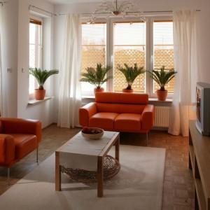 Pomarańczowe meble i donice z kwiatami sprawiają, że  jasny salon staje się bardziej wyrazisty na tle strefy dziennej. Fot. Archiwum Dobrze Mieszkaj.