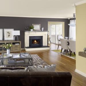 W dużym salonie można sobie pozwolić na ścianę w ciemnym kolorze, takim jak ciemnografitowy. Fot. Benjamin Moore.