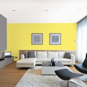 Jednym z pomysłów na ożywienie szarości może być zestawienie jej w duecie ze słonecznym żółtym kolorem. Fot. Jedynka.