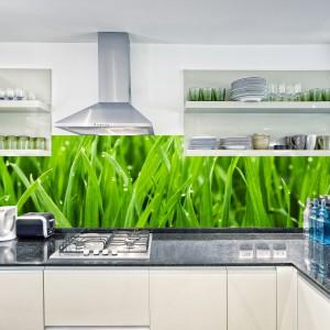 Fototapeta do kuchni FKN152 – Trawa z kroplami wody. Intensywny, zielony kolor pięknie ożywi wnętrze. Nada mu również indywidualny charakter. Fototapeta na wymiar, o wysokości do 100 cm i dowolnej długości. Odporna na uszkodzenia. Można czyścić przy pomocy zwykłych, domowych środków. 99 zł/mb, DecoMania.pl.