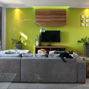 Oliwkowy kolor ściany stanowi oryginalne tło dla telewizora. Projekt Arkadiusz Grzędzicki. Fot. Bartosz Jarosz.