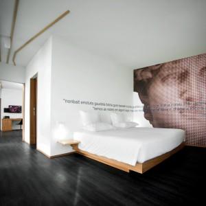 Fototapeta nawiązująca do klasycznych, antycznych rzeźb umieszczona na całej ścianie prezentuje się bardzo efektownie. Fot. Design & Wine Hotel.