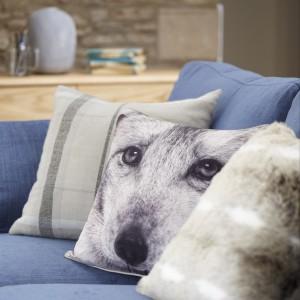 Oryginalna, miękka poduszka z wizerunkiem pieska. Fot. Tesco Direct.