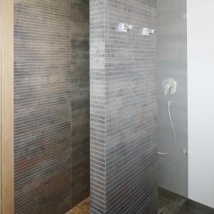 Przy drzwiach umieszczono wnękę prysznicową, która zastępuje standardową kabinę. Proj. Agnieszka Ludwinowska. Fot.Bartosz Jarosz.